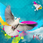 happy-holi-wallpapers-00004