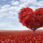 red-heart-love-picture